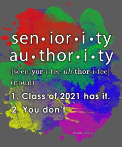 Seniority Authority Definition
